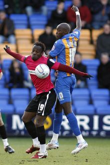 npower League Two - Shrewsbury Town vs. Southend United - 21/01/12